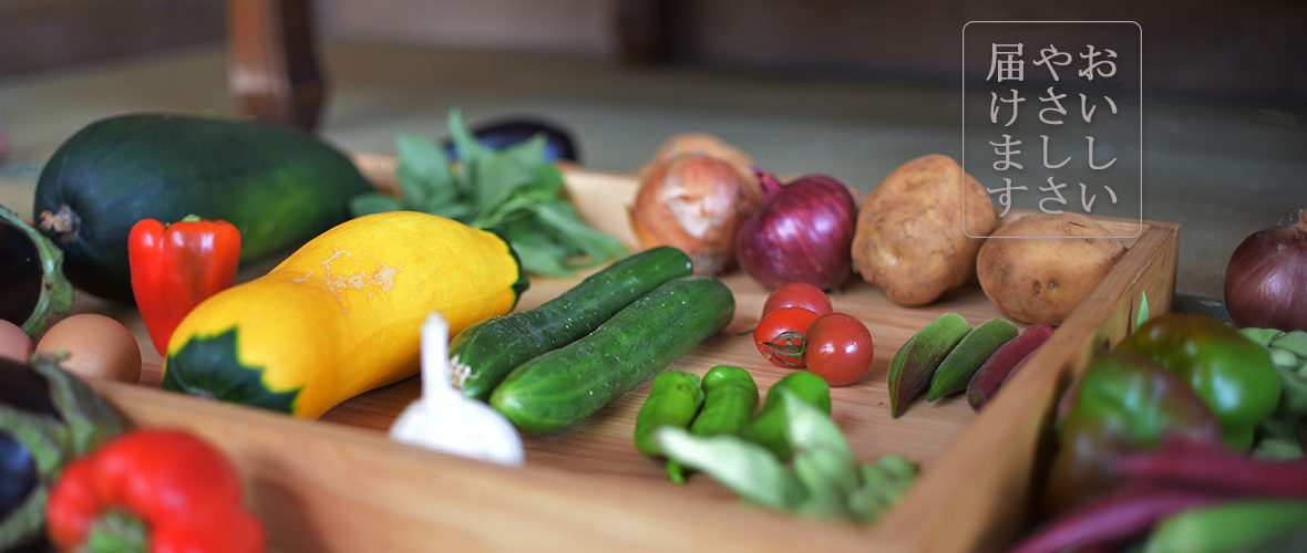 色とりどりの夏野菜